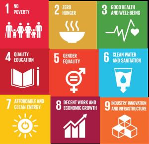 UN Goals 1-9