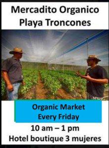 organic-market-in-troncones