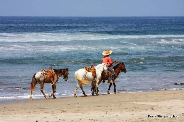 Immerse In The Natural Beauty Of Troncones Beach Mexico